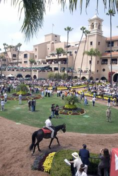 Off to the races at the Del Mar Race Track with my good friend GMS and the girls!