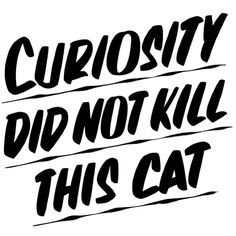 curiosity did not kill this cat and like OMG! get some yourself some pawtastic adorable cat apparel!