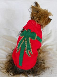 dog cat sweater red package ribbon  christmas new #EastsideCollection
