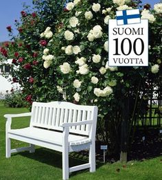 """The nostalgic climbing rose """"Jasmina®"""" inspires us to the highest degree. She is very robust and often flowering and pleases us with her s … [. Austin Rosen, David Austin Roses, Climbing Roses, Clematis, Porch Swing, Hedges, Vines, Pergola, Planters"""