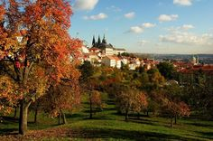 #Praga #Castelo #Jardins