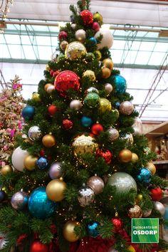 Kerst inspiratie doe je op in de kerstshow van tuincentrum Osdorp. Dit kerstthema heet Vrolijke kerst, de kleuren springen uit je boom en de versiering is allemaal met een knipoog, het is gewoon het vrolijkste kerstthema dat wij hebben! Ornament Wreath, Ornaments, Christmas Tree, Wreaths, Holiday Decor, Xmas, Teal Christmas Tree, Door Wreaths, Xmas Trees