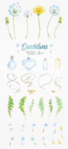 Dandelions 37 Watercolor Elements. Clipart by OctopusArtis on Etsy