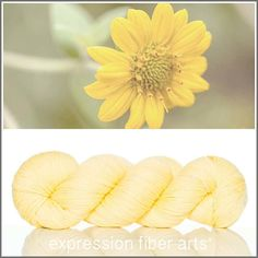 Expression Fiber Arts, Inc. - GOLDEN BUTTER YELLOW - 'SOCKLOVE' Limited Edition SOCK YARN, $24.00 (http://www.expressionfiberarts.com/products/golden-butter-yellow-socklove-limited-edition-sock-yarn.html)