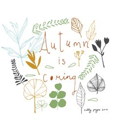 Illustration flowers and leaves autumn1-sallypayne