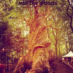 """Nog meer reden voor een feest! Dit jaar is namelijk de vijfde editie van Into the Woods. Wij zijn donders benieuwd naar jullie hoogtepunten van de afgelopen vijf jaar. Onder alle nostalgische comments verloten wij 2 weekenders inclusief wijnarrangement bij de nieuwe """"Wijnbar-Area"""". Nog 8 dagen!"""