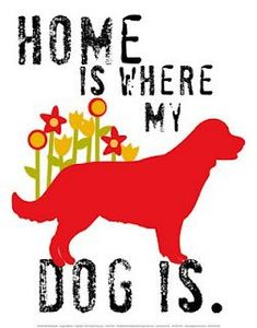 Home is where my dog is.