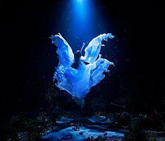 Amazon.co.jp: Aimer : 誰か、海を。EP - 音楽