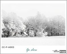 """Adopt the pace of nature: her secret is patience."" ― Ralph Waldo Emerson"" Go Slow"" . . . #afterimage #afterimagecanvas #wallartdecor #wallartprint #wallartforsale #interiorart #interiorprints #interiorposter #hangingart #canvasprintsforsale #printedcanvas #photographyprintsforsale #artdecor #artdecoration #natureinspired #decorsouthafrica #wallartsouthafrica #homedecorsa #snowscapes #blackandwhite #printedart #photoprints #fantasticearth #transformyourspace #snowphotography"