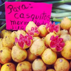 Guayabas, fruta deliciosa, típica del ponche navideño.