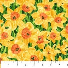 Northcott Stonehenge Daffodils by LInda Ludovico 39177 52 $9.50/yd PREOREDER DUE FEB/MARCH '14