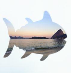 The Rio World