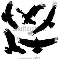 Silhouette Aigle, Hawk Silhouette, Vogel Silhouette, Silhouette Tattoos, Silhouette Vector, Fairy Silhouette, Future Tattoos, New Tattoos, Celtic Tattoos