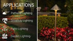 Solid brass conical path/area light available with LED bulbs for flexibility in design. Pathway Lighting, Outdoor Lighting, Dark Skies, Cool Landscapes, Led Lamp, Pathways, Solid Brass, Bulbs