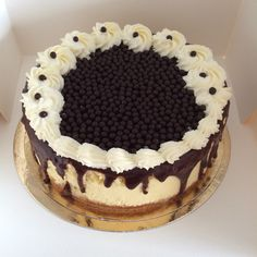 Cheese cake pépites de chocolat   Chez Dorodi ....