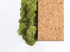 CEILING - Sound absorbing wall art from Nordgröna #architonic #nowonarchitonic #interior #design #furniture #ceiling #absorbing #sound #green #moos