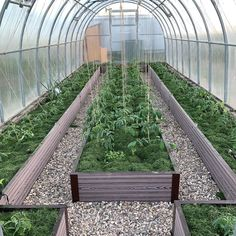 Diy Greenhouse Plans, Greenhouse Gardening, Glass Green House, Above Ground Garden, Winter Greenhouse, Cinder Block Garden, Vegetable Garden Design, Backyard Projects, Garden Planning