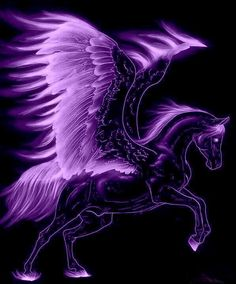 2015/08/26 Pegasus