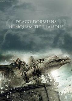 Dragon Ride    Harry Potter  Hermione Granger  Ron Weasley