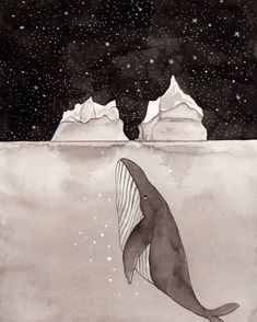 Day 2#inktober - #divided, Day 83 of #the100dayproject #100daysofwhales .