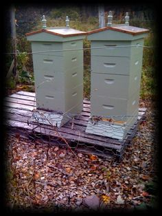 My hives