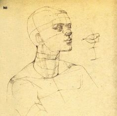 Gottfried Bammes Drawing Heads, Anatomy Poses, Drawing Studies, Drawings, Art, Study, Photos, Anatomy, Shop Signs