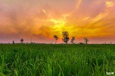 light up my day ... by Tariq AK on 500px