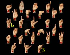 So since watching Switched at Birth I have become fascinated with American Sign Language and I have decided that this is something that I really want to learn you never know when it might come in handy! (no pun intended btw)