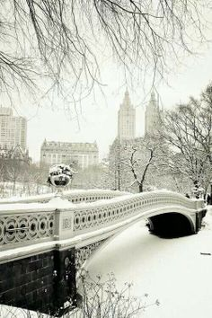 Snowy Central Park Voyage New York Central Park Beautiful Places New York