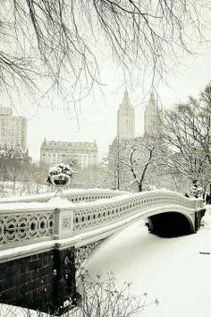 Snowy Central Park.