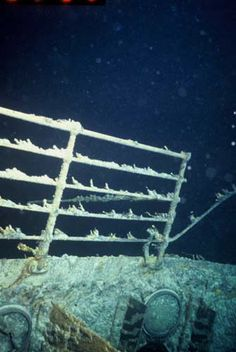 Rms Titanic, Titanic Deaths, Titanic Sinking, Titanic Ship, Titanic History, Titanic Movie, Titanic Underwater, Titanic Artifacts, Underwater Pictures