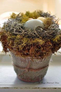 Bird Nest in a Flower Pot with Tutorial  I can use the flower pots and moss left over from Living room decor. Age them with watered down white paint and find eggs to go in them. Make nest of paper like another pin and reindeer moss intertwined.