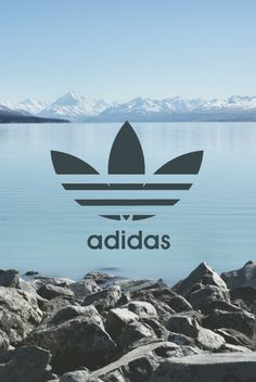adidas photography - Google Search
