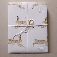 Rabbit Gift Wrap