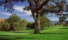 LINKS Golf Magazine | The Best Source on Golf Courses, Travel and Lifestyle: Alisal Guest Ranch