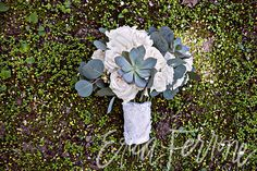 Kara and Striker   New England Aquarium   Erica Ferrone Photography   Flowers by Blooms of Hope