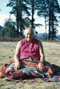"""""""When we begin to win the struggle to free ourselves from the waves of afflictive emotions, the mind will become like a calm and vast lake. This peaceful state, the natural tranquility of mind, will lead to deep samadhi [concentration], which is the pacification of wandering, deluded thoughts."""" ~ H.H. Dilgo Khyentse Rinpoche"""