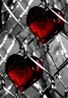 جرأة الفكر و حماسة الوعي مع المبدع /        ابراهيم السعدي من أجل ثقافة عقلانية تنويرية تقدمية تهدف لتحرير العقل