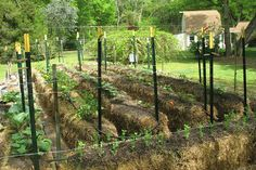 Hay Bale Gardening: Effortless Food Production with No Weeds, No Fertilizer & Less Watering