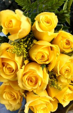 (Jen: Bouquet of yellow roses.... ♥, though any roses, really... Esp. pale green, red, yellow, coral/orange)
