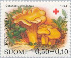 Stamp: Chantarelle (Cantharellus cibarius) (Finland) (Red Cross- Mushrooms) Mi:FI 754,Sn:FI B201,Yt:FI 718,AFA:FI 761