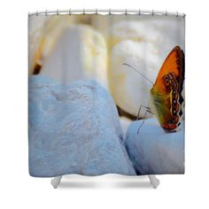 #shower #curtain #home #decor http://fineartamerica.com/products/1-tramonti-butterfly-photos-by-zulma-shower-curtain.html