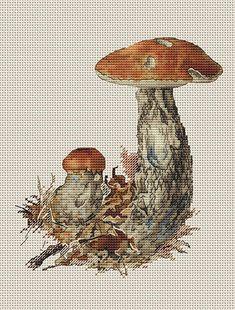 Brilliant Cross Stitch Embroidery Tips Ideas. Mesmerizing Cross Stitch Embroidery Tips Ideas. Small Cross Stitch, Cross Stitch Kitchen, Just Cross Stitch, Cross Stitch Fabric, Cross Stitch Art, Cross Stitch Flowers, Cross Stitching, Cross Stitch Embroidery, Cross Stitch Patterns