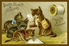 Olde America Antiques | Quilt Blocks | National Parks | Bozeman Montana : Sewing and Quilting - Sewing Cats 9