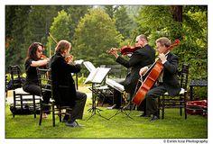 string quartet. casual black.