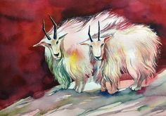 watercoler - year of the goat / 2015