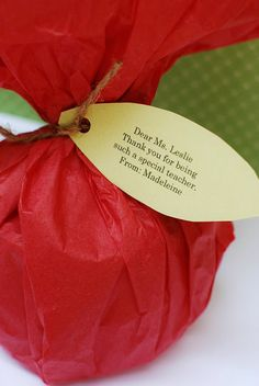 You could wrap any little babble as an end of the school year gift like this.