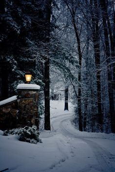 Opening to the ice bears land tucked away in a wintry wonderland and miles from civilization. Winter Love, Winter Snow, Winter Christmas, Winter Night, Prim Christmas, Christmas Scenes, Christmas Lights, Winter Schnee, Winter Magic