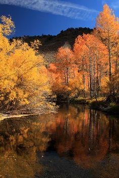 June Lakes Loop, Mono County, California; photo by Jason Branz