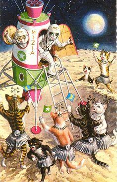 Space catz